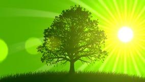 4 seizoenen: De lente (Geanimeerde Achtergrond) stock illustratie