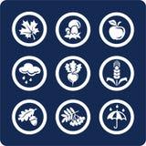 Seizoenen: De pictogrammen van de herfst (plaats 4, deel 1) Stock Afbeelding