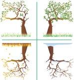 Seizoenen in de spiegel. vector illustratie