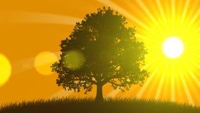4 seizoenen: De zomer (Geanimeerde Achtergrond) stock illustratie
