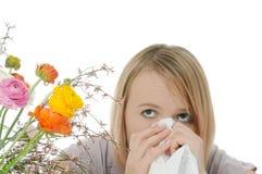 Seizoengebonden allergie Stock Foto's