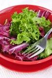 Seizoengebonden salade in een rode kom Stock Foto