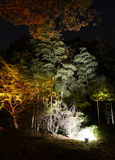 Seizoengebonden verlichting bij Rikugien-Tuin royalty-vrije stock afbeeldingen