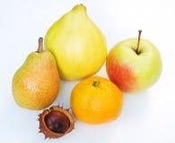 Seizoengebonden Vruchten Royalty-vrije Stock Afbeeldingen