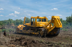Seizure of forest land for agriculture. Destruction of forests with bulldozer. Stock Image