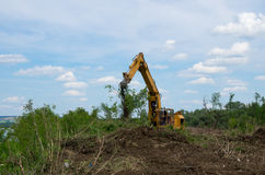 Seizure of forest land for agriculture. Destruction of forests. Stock Image