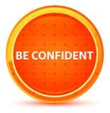 Seja botão redondo alaranjado natural seguro ilustração stock