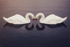 Seja meu Valentim Fotografia de Stock