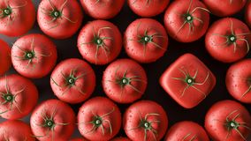 Seja um conceito diferente, tomates do cubo, 3d rendem ilustração stock