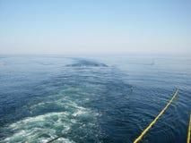 Sejsmiczni kable od przemysłowego ropa i gaz badacza statku naczynia w błękitnej ocean powierzchni, sejsmiczna dno morskie ankiet zdjęcie stock
