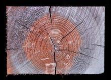 sekci przecinający prostokątny drewno Fotografia Stock