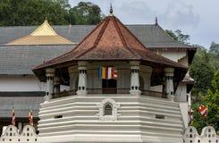 Sekcja Buddyjska Święta ząb relikwii świątynia zdjęcia royalty free