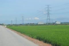 Sekinchan Padi领域 免版税库存图片