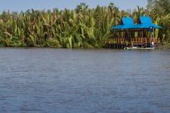 Sekonyer River. Rainforest Kalimantan / Borneo Stock Photography