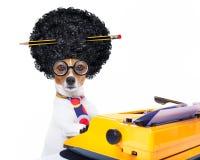 Sekretarki maszyna do pisania pies Obraz Royalty Free