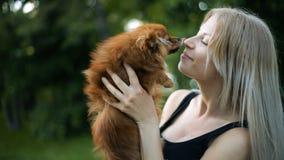 Seksowna blond kobieta z bardzo tęsk płynący włosiane sztuki z psem Pomorscy spitz trakenu buziaków uśmiechy zbiory