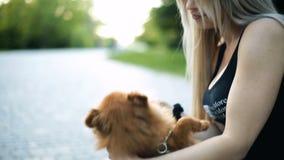 Seksowna blond kobieta z bardzo tęsk płynący włosiane sztuki z psem Pomorscy spitz trakenu opieki uśmiechy zbiory