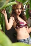 Seksowna kobieta w bikini Zdjęcia Royalty Free