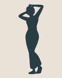 Seksowna kobiety sylwetka Obrazy Stock