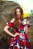 Seksowna miedzianowłosa dziewczyna w sukni w sianie Obraz Royalty Free