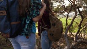 Seksowne podróżnik dziewczyny z plecakami na ich ramionach cieszą się wolność podróż Dziewczyna śmiech nad przeszkodami zdjęcie wideo