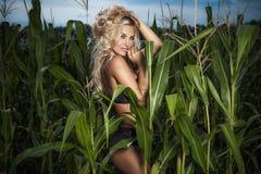 Seksowny blondynki kobiety pozować plenerowy Obrazy Stock