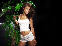Seksowny brunetki kobiety pozować. zdjęcia royalty free