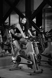 Seksowny dziewczyny ćwiczenie w gym Obraz Stock