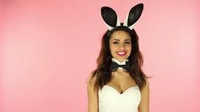 Seksowny królik zdjęcie wideo
