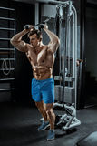 Seksowny mięśniowy mężczyzna pozuje w gym, kształtny brzuszny Silny męski nagi półpostaci abs, pracujący out Zdjęcia Royalty Free