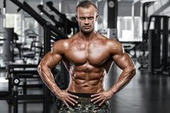 Seksowny mięśniowy mężczyzna w gym, kształtny brzuszny Silny męski nagi półpostaci abs, pracujący out Zdjęcia Stock