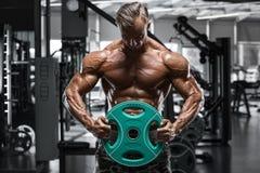 Seksowny mięśniowy mężczyzna w gym, kształtny brzuszny Silny męski nagi półpostaci abs, pracujący out Obraz Royalty Free
