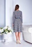 Seksowny piękno kobiety model stoi z powrotem odzieży mody popielatą suknię Fotografia Royalty Free