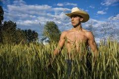 Seksowny rolnik lub kowboj obok siana pola zdjęcie stock