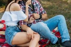 Seksuele aantrekkelijkheid een kerel en een meisje zitten op een plaidsluier op het gras, het koesteren en het kussen een mens in royalty-vrije stock foto's