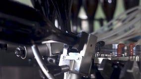 Sektflaschen auf FabrikFörderband, Spritzflaschen für das Abfüllen stock video footage