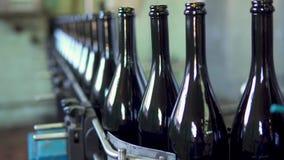 Sektflaschen auf Flaschenabfüllmaschine des Förderers oder des Wassers in der Weinkellerei stock footage
