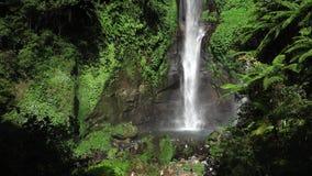 Sekumpul瀑布在有游人的巴厘岛,印度尼西亚 影视素材