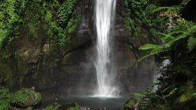 Sekumpul瀑布在有游人的巴厘岛,印度尼西亚 股票录像