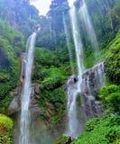 Sekumpul é a cachoeira a mais grande na ilha de Bali foto de stock royalty free