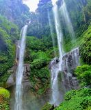 Sekumpul est la plus grande cascade en île de Bali photo libre de droits