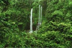 Sekumpul vattenfall i djungeln med klart vatten som lite varstans faller på stenklippor och gröna träd, Bali, Indonesien Royaltyfri Bild