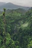 Sekumpul vattenfall i djungeln med klart vatten som lite varstans faller på stenklippor och gröna träd, Bali, Indonesien Arkivbilder