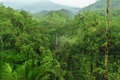 Sekumpul-Wasserfall im Dschungel mit klarem Wasser ganz, das herum auf Steinklippen und grüne Bäume, Bali, Indonesien fällt Lizenzfreie Stockbilder