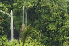 Sekumpul-Wasserfall im Dschungel mit klarem Wasser ganz, das herum auf Steinklippen und grüne Bäume, Bali, Indonesien fällt Stockfotos