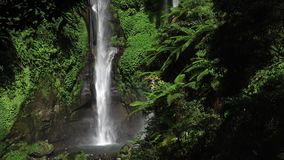 Sekumpul Waterfall in Bali, Indonesia stock footage