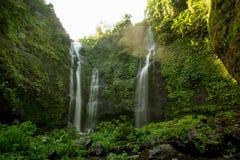 Sekumpul Waterfalls in Bali Royalty Free Stock Images