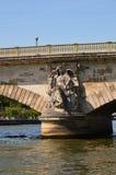 Sekwana w Paryż (Francja) Obrazy Stock