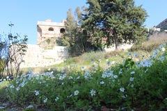 Selçuk城堡 库存照片