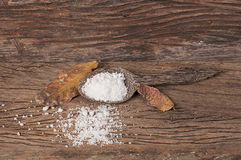 Sel dans la cuillère en bois Image stock